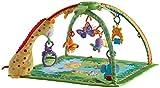 Mattel Fisher-Price K4562 Rainforest Erlebnisdecke Bild 4
