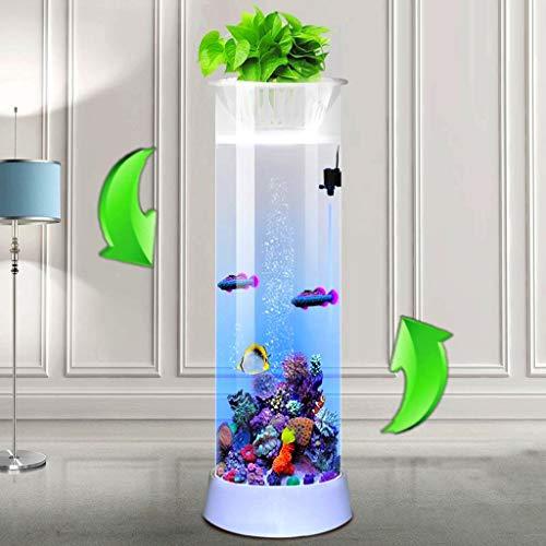 Mai tank carro armato cilindrico di pesci, acquario verticale del salone, filtro da tavolino di vetro ecologico del piccolo e medio del desktop (dimensioni : 20 * 20 * 55cm)