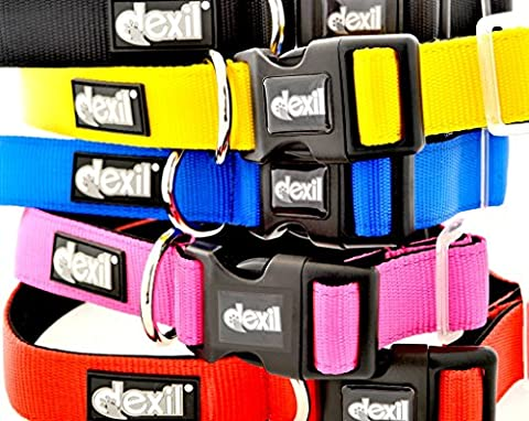 LIFETIME GUARANTEE Dexil Elite Range Luxury Neoprene Padded Extra Strong Adjustable Small-Medium Pet Dog Collar (Flash Red, Small-Medium 25-43cm x 25mm)