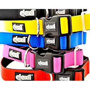 Dexil-Elite-Range-Luxury-Neoprene-Padded-Extra-Strong-Adjustable-S-M-L-XL-XXL-Pet-Dog-Collars