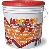 Vaina líquido impermeabilizante Transitable Maxigom Laiv Transparente 14 Lt