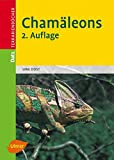 Chamäleons (Datz Terrarienbücher)