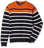 Indian Terrain Boys' Sweater (TBA16SWK01...
