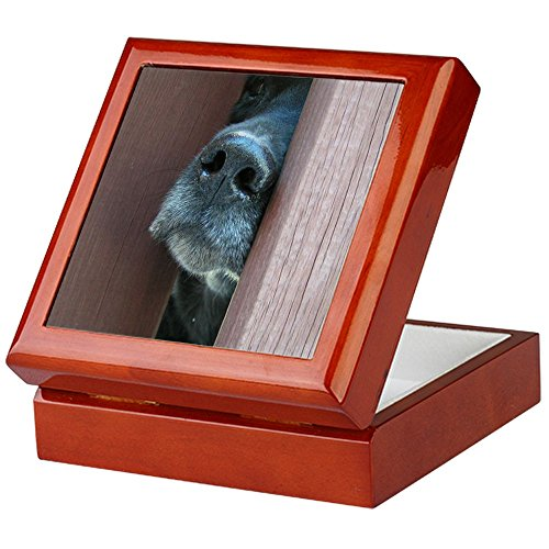 Nase weiß–Keepsake Box, fertig Hartholz Jewelry Box, Samt Gefüttert Memento Box mahagoni (Lustig Lab Welpen)