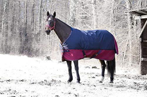 Equi Théme Tyrex Outdoor Pferdedecke mit Bauchlatz 300g Füllung 1200 D Webdichte wasserdicht 400 929 (190/145, Blau-Bordeaux)