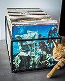 #3: INDIAN DECOR LP Storage Crate | Magazine Storage Crate | Garage Storage Ideas | Black