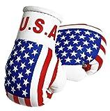 Mini Guantes de boxeo–Estados Unidos