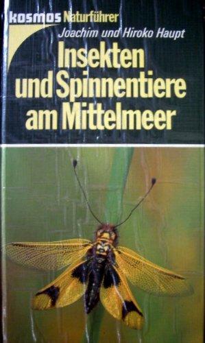 Insekten und Spinnentiere am Mittelmeer