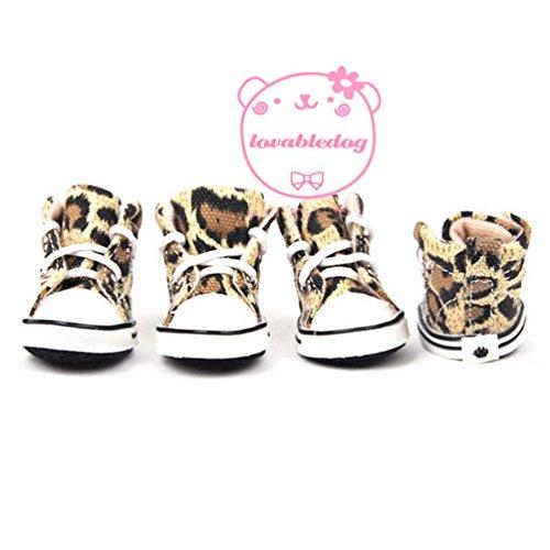 selmai-spitze-bis-leopard-canvas-sneaker-sportliche-hund-schuhe-rutschfeste-sohle-fur-kleine-hund-ka