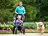 Pugga® elastische und flexible Jogging Hundeleine, haltbarer Doppel Dual Griff Bungee Gummi Leine, reflektierend, 1,6m bis zu 1,9m dehnbar, verstellbarer Hüftgurt (Passend 0,7m bis zu 1,2 m Taille) aus reißfestem Nylon für Hunde bis max. 45 kg, Farbe: grün und orange - 9