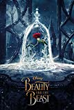 empireposter 765505, Die Schöne und das Biest Enchanted Rose Plakat