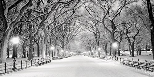 New York City (NYC) Central Park Mall in Snow Decorative Photography Poster Print 12x24