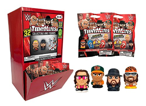 Party Animal Teenymates WWE Series Gravity Mystery Box Container by Party Animal (Gravity Box)