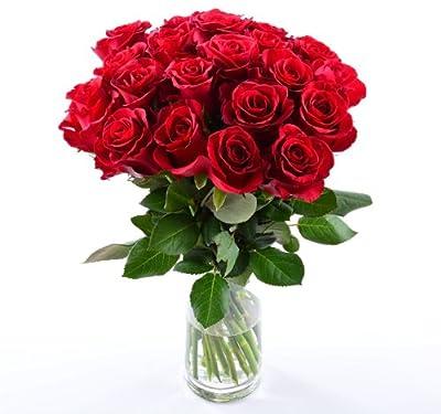 Blumenversand - Blumenstrauß - Rosen in rot - 20 Stück rote Rosen pur! mit Gratis - Grußkarte zum Wunschtermin versenden von Blumenversand - Der Renner auf Du und dein Garten