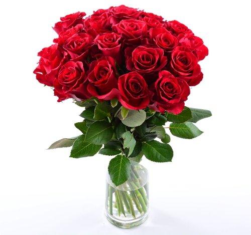 floristikvergleich.de Blumensversand- Blumen Pur! – Rote Rosen aus Afrika – 20 Stück rote Rosen pur! mit Gratis – Grußkarte