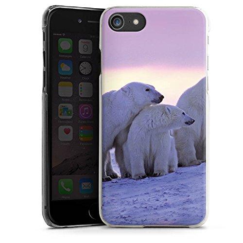 Apple iPhone 7 Tasche Hülle Flip Case Eisbär Eisbären Bär Hard Case transparent