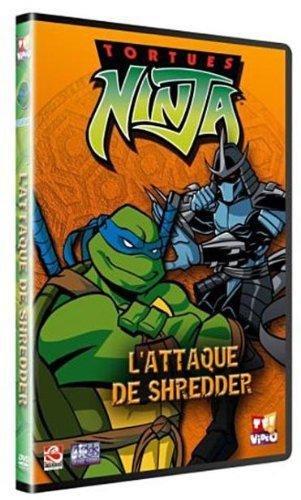 Les Tortues Ninjas 2
