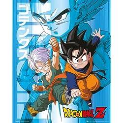 De Bola de dragón Z niño y diseño de los personajes de Goten Póster de 40 x 50 cm