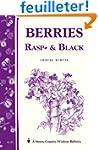 Berries: Rasp and Black