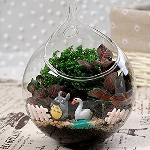Ohpa Hanging fiore di vetro vaso vaso e Mini acquario