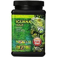 Exo terra Stick Iguane Adulte 0,560 kg pour Reptiles et Amphibiens