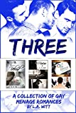 Three: A Collection of Gay Ménage Romances (English Edition)