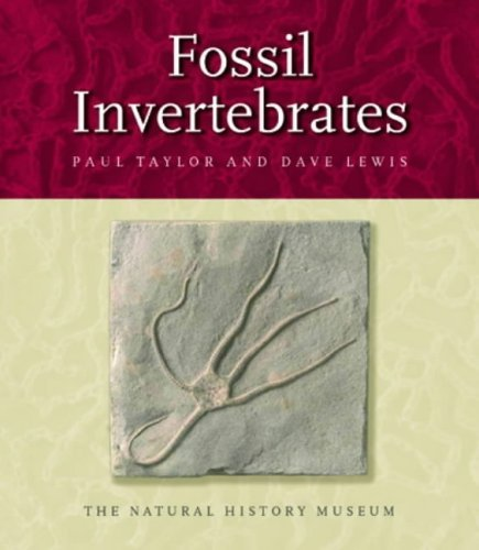 Fossil Invertebrates by Paul D. Taylor (2005-06-24)