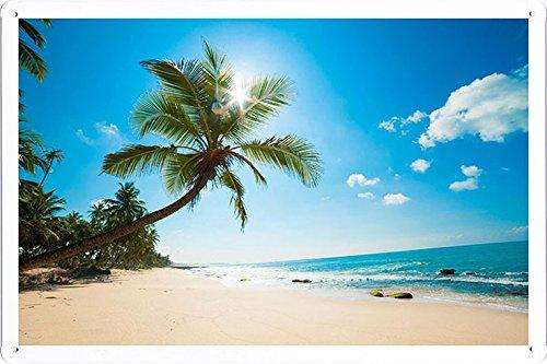 Metall Poster Blechschilderplatte Blechschild Plakat Sea Sand Palm Trees Surf 84649 Retro Weinlese Kunstdrucke by hamgaacaan (20x30cm)