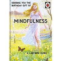 "Ladybird Books for Grown-Ups""Mindfulness"" Birthday Card"
