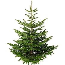 Weihnachtsbaum Kaufen Echt.Suchergebnis Auf Amazon De Für Tannenbaum Echt