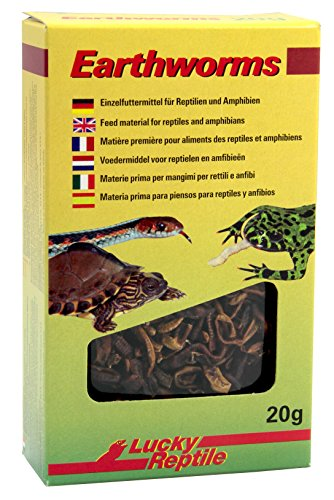 Lucky Reptile Earthworms 10 g, 2er Pack (2 x 10 g)