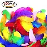Romote 300pcs DIY Bunte Federn Farbe sortiert Bastelbedarf für Kunsthandwerk Nähen