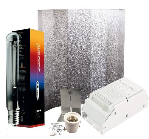 250 W Set standard Pro V de T + Gib Lighting Flower Pro