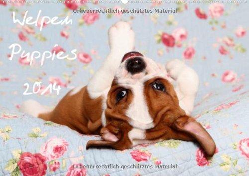 Welpen - Puppies 2014 (Wandkalender 2014 DIN A2 quer): Wandkalender (Monatskalender, 14 Seiten) Irischer Boxer
