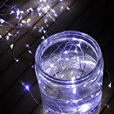 Timewanderer 5m/16.4Ft 50 Led String Starry Fairy Light AA Battery Operated Decorative Bright Micro Ultra Thin LED Lights on Silver Wire for Christmas DIY Decoration (cool white)