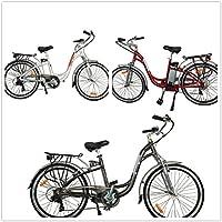 TDL6162 city dutch ebike bicycle 36v 10ah LIMITLESS SHARING
