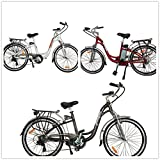 limitless sharing TDL6162 city dutch ebike bicycle 36v 10ah (red)