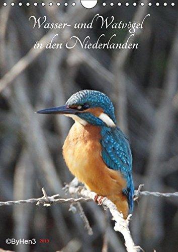 Wasser- und Watvögel in den Niederlanden (Wandkalender 2019 DIN A4 hoch): Die wunderbare Schönheit der Natur (Monatskalender, 14 Seiten ) (CALVENDO Tiere) -