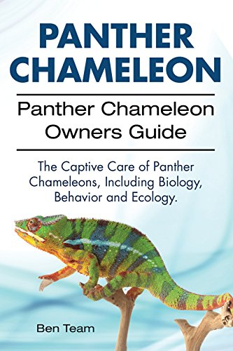 Panther Chameleon Owners Guide. Including Panther Chameleons Biology, Ecology and Behavior. The Captive Care of Panther Chameleons. (English Edition) -