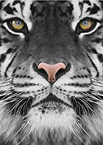 Tiger Face Light Up Eyes LED Canvas Photo Picture Print - Homestreet Gifts by Homestreet Gifts