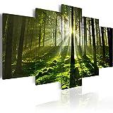 murando Bilder 200x100 cm - Leinwandbilder - Fertig Aufgespannt - Vlies Leinwand - 5 Teilig - Wandbilder XXL - Kunstdrucke - Wandbild - Landschaft Wald 030213-32