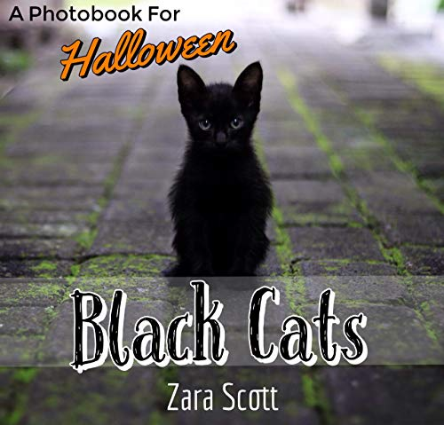 Black Cats: A Photobook For Halloween (Holiday Season Pets 1) (English Edition)