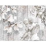 Tapisserie Photo Ange 352 x 250 cm Laine papier peint Salon Chambre Bureau Couloir décoration Peinture murale décor mural moderne - 100% FABRIQUÉ EN ALLEMAGNE - 9230011c