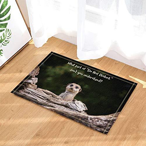 ZZ7379SL Safari Wil Tiere Suricatta Decor lustige Erdmännchen Meme auf Holz Bad Teppiche 3D Digitaldruck 40 x 60 cm Schlafzimmer Küche Kinder Badezimmer Matte Zubehör (Lustige Safari Super)