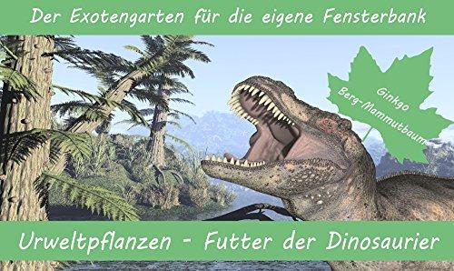 SAFLAX - Anzuchtset - Urweltpflanzen - Futter der Dinosaurier - Mit 2 Samensorten, Gewächshaus, Anzuchtsubstrat, Zellfasertöpfen zum Umtopfen und Anleitung