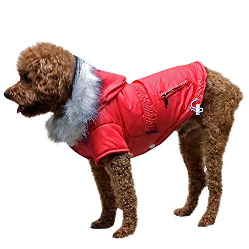 Amphia - Hunde KostüM,Haustier Hund Pelzkragen Mantel Baumwolle Jacke Kleidung - Haustier Hund Katze Welpen Winter warme Kleidung Kostüm Jacke Mantel Kleid(Rot,S) - Portugal Mantel