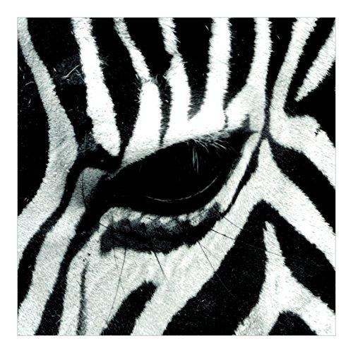 Vliestapete–Zebra Crossing–Wandbild quadratisch