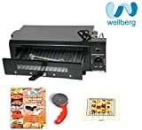 WellBerg Smart Electric Tandoor