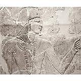 decomonkey Fototapete Steinwand Steine 400x280 cm XXL Design Tapete Fototapeten Vlies Tapeten Vliestapete Wandtapete moderne Wand Schlafzimmer Wohnzimmer Ägypten Pharao Grau FOB0134c84XL