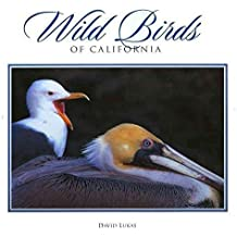 [(Wild Birds of California)] [By (author) David Lukas] published on (August, 2000)